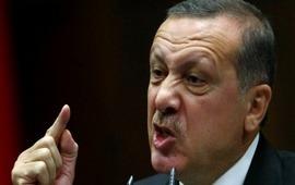 Эрдоган заявил о праве