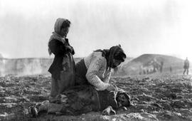 """""""Кто убил армян"""": египетский фильм"""