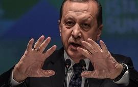 Эрдоган трус