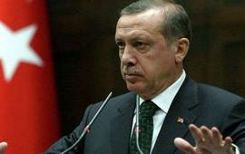 """""""Трусливый дурак Эрдоган"""""""
