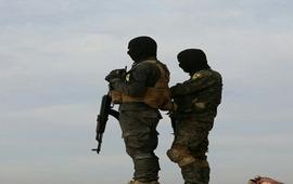 В уничтожении турецких курдов крайними назначены