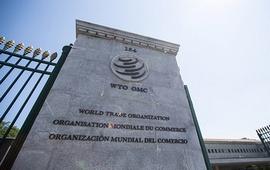 Киев направил в ВТО запрос