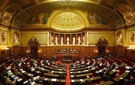 Сенат Франции принял законопроект по криминализации
