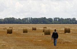Украинский рынок земли - поле тревог