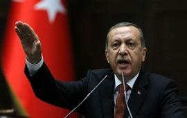 Запрос Эрдогана о привлечении к суду