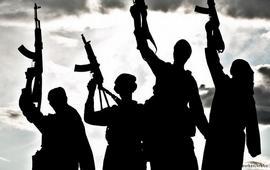 Джихадисты возвращенцы сотрудничают