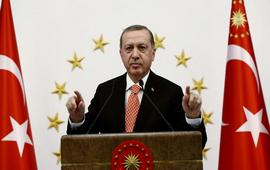 Турция в Сирии воюет