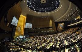 В ООН приняли резолюцию