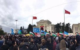 Турецкие студенты протестуют