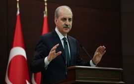 Конкретные цели турок в Сирии