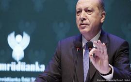 Безумный Эрдоган угрожает Нидерландам