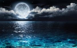 Луна повышает рождаемость