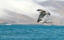 Озеро Севан - Армения