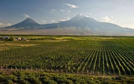 Обиталище Богов - Священная Гора Арарат