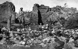 Позорная попытка турок скрыть Геноцид армян