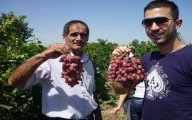 Себастия Овсепян - Kiva - Поддержка армян