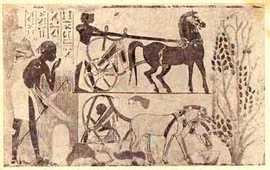 Египет, Месопотамия и Древняя Армения