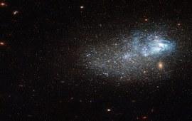 Галактики Маркаряна