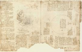 Запись Леонардо да Винчи об Армянском нагорье