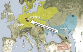 Родина индоевропейских языков - Армянское нагорье