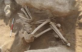 Армения- Мецамор - Раскопки выявили следы разрушения