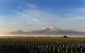 Устройство Армении - Нахарарства и Предписанные правила