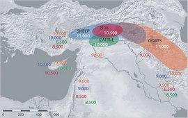 Армения - Распространение сельского хозяйства