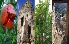 Крепость Мегри - Сюник - Армения