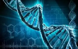 Генетика происхождения армян