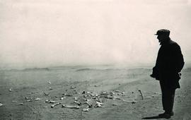 Фото из королевского архива Норвегии - Бассейн Евфрата