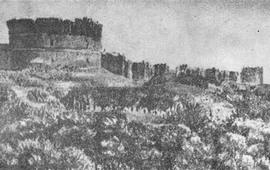 История Товмаса Погосяна - Карин 1917 г.