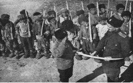 Рассказ Мэйнарда Уильямса о детях защитниках Вана
