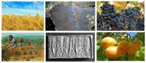 Раннее земледелие в Армении