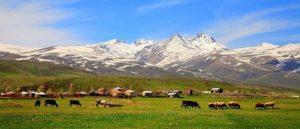 Санскрит и Армянский