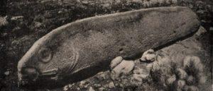 Вишапы - Древние памятники Армении