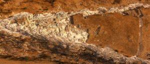 О раскопках Тигранакерта