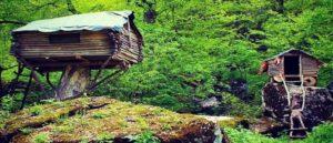 Хижины в Иджеванском лесу
