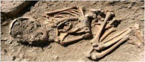 В Малатье найден 5700-летний скелет