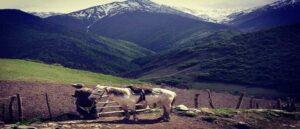 Арцах - Девятая провинция Великой Армении