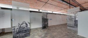 Новая выставка Ара Гюлера