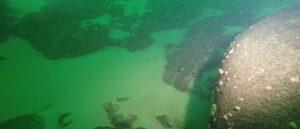 В озере Севан дайверы обнаружили останки