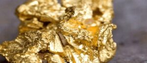 В Карине обнаружены запасы золота