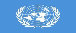 Коллегия адвокатов Армении подготовила отчет по серым волкам спецдокладчику ООН по расизму