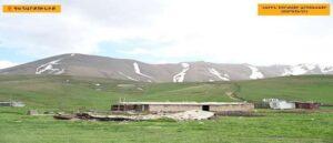 Азербайджанские ВС украли корову у армянского пастуха