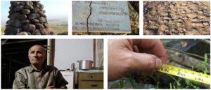 В армянских сёлах нашли гигантские кости людей