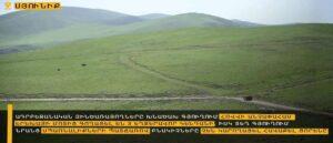 Азербайджанские ВС украли у несовершеннолетнего пастуха крупный рогатый скот