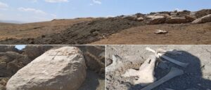 Армянские могилы в Ване повреждены бульдозерами - Очередной акт вандализма
