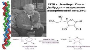 Армянин Альберт Сен-Дьёрди в мировой истории медицины